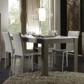 Table de repas contemporaine Eole